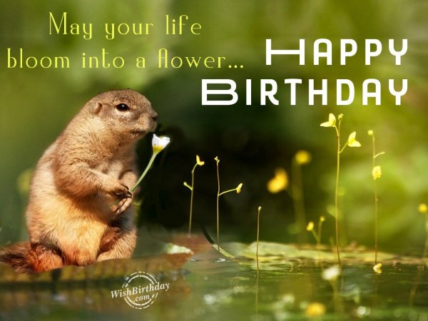 May your life bloom into a flower - WishBirthday.com