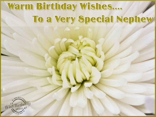 Warm Birthday Wishes To A Very Special Nephew...