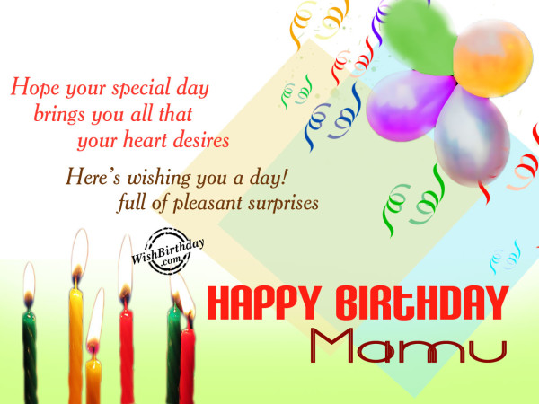 Wishing you a very happy birthday mama ji
