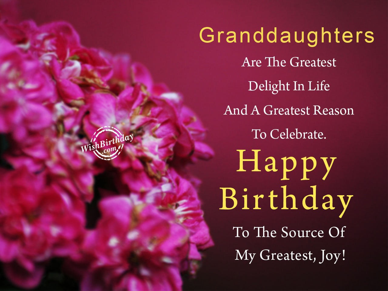 Birthday Wishes For Granddaughter Images Pictures