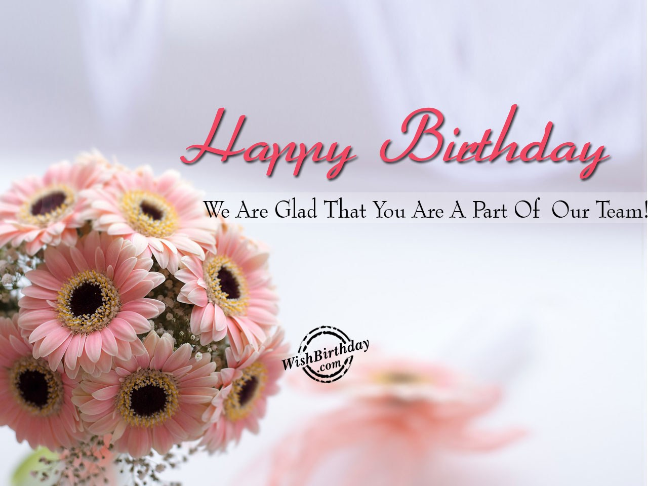 We Are Glad That You Are A Part Of Our Team Happy Birthday Wishes To Team Member