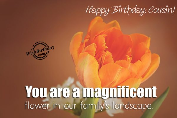 You Are A Magnificent Flower – Happy Birthday Cousin - WishBirthday.com