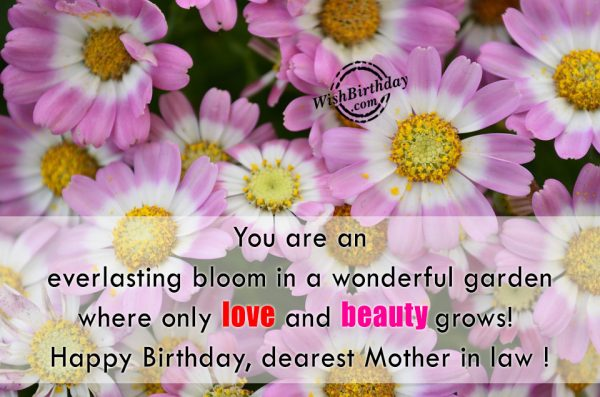 You Are An Everlasting Bloom In A Wonderful Garden - WishBirthday.com