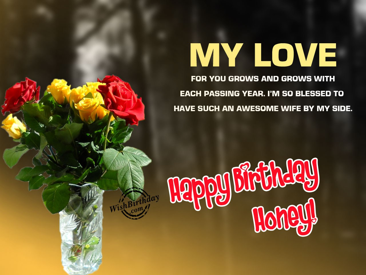 Birthday wishes for wife birthday images pictures my love for you grows m4hsunfo