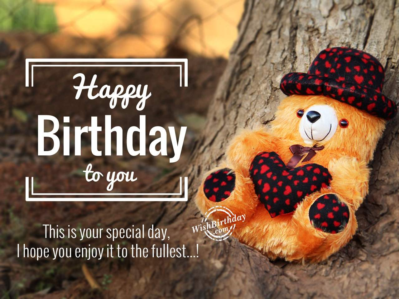 this is your special day i hope you enjoy it to the fullest happy